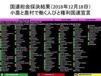 【国連総会にて最終採択!】「小農権利国連宣言」が国際法に!121カ国の賛成(日本棄権)で採択されました。 - Lifestyle&平和&アフリカ&教育&Others
