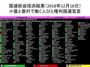 【国連総会にて最終採択!】「小農権利 国連宣言」が国際法に!121カ国の賛成(日本棄権)で採択されました。 - Lifestyle&平和&アフリカ&教育&Others