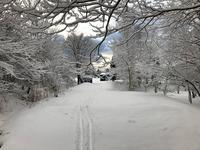 雪の中の岩見沢プロジェクト 2 - 『文化』を勝手に語る