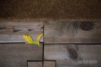 店先の黄色い鳥 - ふわふわ天使