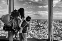 六本木ヒルズ展望台 〜 東京タワー - 光のメロディー