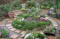 小さなローズガーデンの12か月・・4月 - 季節の風を追いかけて