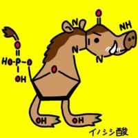 化合物へなちょこイノシシ酸できました - 動物キャラクターのブログ へなちょこSTUDIO