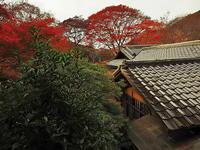 秋の瓦 - 風の香に誘われて 風景のふぉと缶
