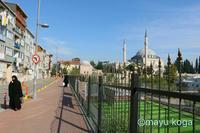 宗教色の強い街で見つけた絶景のモスク - ねこ旅また旅