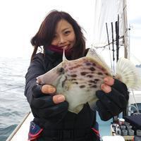 【大鱗】カワハギチャーター! - まんぼう&大鱗 釣果ブログ