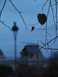 夕闇迫るパリ - 好きな写真と旅とビールと