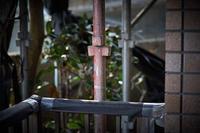 師も駆ける月 寫誌 ⑰75mmの誘惑… HC 75mm F1.8をカラーで試す - FOTOKOTO