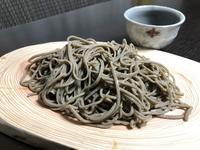フードコート一挙紹介!小ネタは蕎麦を極め・・・られるのか???サンバレー&自宅 - 楽食人「Shin」の遊食案内