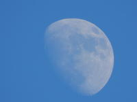 午後の月 - 三宅島風景