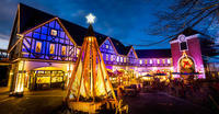 今週末はクリスマススペシャルイベント開催! - 神戸布引ハーブ園 ハーブガイド ハーブ花ごよみ