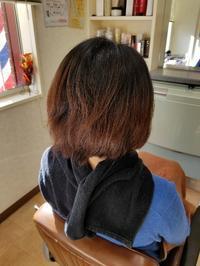 ハイライトカラー - ヘアーサロンササキ(釜石市大町)のブログ