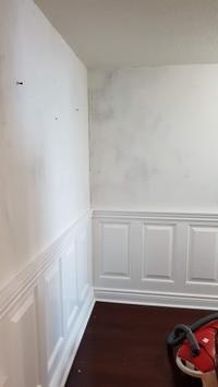 夫の次のプロジェクトはペンキ塗り - 2度目のリタイア後のライフ