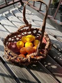 山葡萄のかごにみかんと柚子・・・繭袋 - 藍ちくちく日記