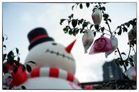 大阪徘徊-12 - Hare's Photolog