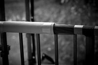 師も駆ける月 寫誌 ⑮75mmの誘惑… HC 75mm F1.8を試す - FOTOKOTO