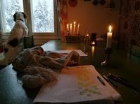 フィンランドでよく見かけるもの冬の楽しみ - Kippis! from Finland