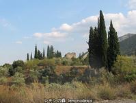 アンフィクリアのアクロポリス - 日刊ギリシャ檸檬の森 古代都市を行くタイムトラベラー