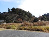 ワラでリースの準備 - 千葉県いすみ環境と文化のさとセンター