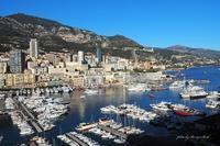 Monaco - Berry's Bird