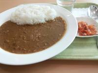 宮崎空港名物ガンジスカレー - B級出張日記