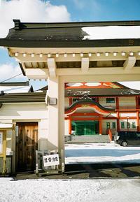 落雪注意と松の雪 - 照片画廊