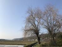 電車に揺られて・・・「冬の昼下がり!いつもの定点観察スポット!」編 - 納屋Cafe 岡山