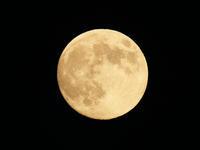 【2/19】2019年は1回限り「スーパームーン」観賞&最も身近な天体「月」を知る特別講座 - 日帰りツアー・社会見学・東京観光・体験イベン