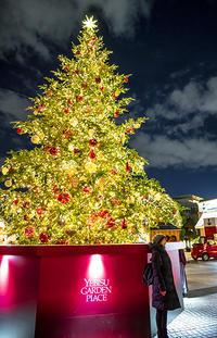 恵比寿ガーデンプレイス クリスマスイルミネーション2018 - エーデルワイスPhoto