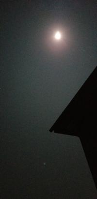 月がきれいな夜だ - One by one メモ日記