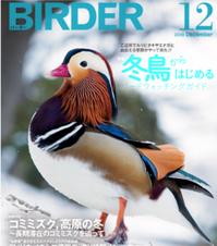 OM-D E-M1 mark2 で撮る鳥撮影セミナー「オリンパス野鳥撮影講座」に参加してみました^^ - ケンケン&ミントの鳥撮りLifeⅡ