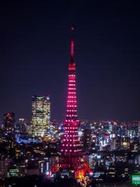 2018.12.21世界貿易センタービルから見た東京の夜景 - ダイヤモンド△△追っかけ記録