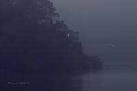 冬霧の朝-2@ 水上池 - 東大寺が大好き