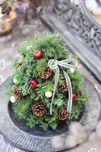 12月のBasicレッスン「クリスマスツリー」 - Le vase*  diary 横浜元町の花教室
