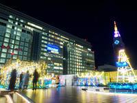 新宿ミナミルミ - 幡ヶ谷写真部 ~写真好き司法書士の写真ブログ~