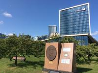 バルト3国紀行(4)ヴィリニュスの杉原千畝顕彰碑と桜の園と国立美術館とビル - 本日の中・東欧