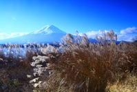 30年12月の富士(10)すすきと富士 - 富士への散歩道 ~撮影記~