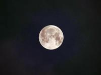 It's a full moon . - いや、だから 姉ちゃん じゃなくて ネイチャー・・・