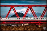 岐阜城-御嶽山を背にして- - びっと飴