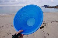 パンニング皿 - Beachcomber's Logbook
