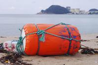 浜辺の明宝ハム - Beachcomber's Logbook