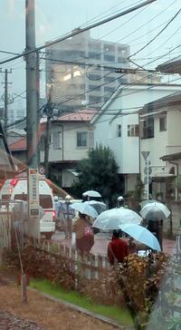 【13時5分の小田急江ノ島線の人身事故】 - お散歩アルバム・・冬本番