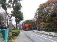 舞岡公園(まいおかこうえん) - ハナ・トリハイカー向け公園ガイド (東京近郊編)