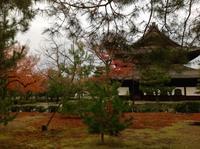 建仁寺 両足院 坐禅会 〆くくり - MOTTAINAIクラフトあまた 京都たより