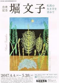 白寿記念堀文子 - AMFC : Art Museum Flyer Collection