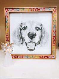 クリスマスの奇跡 - ビーグル犬フロドのひとりごと