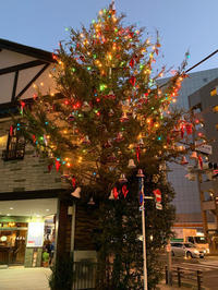 クリスマスイブのお食事とケーキ - 麹町行政法務事務所