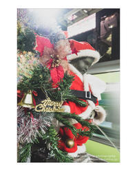 Merry Christmas - ♉ mototaurus photography