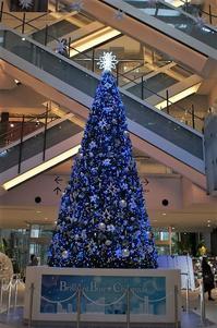 みなとみらいのクリスマスツリー - さんじゃらっと☆blog2