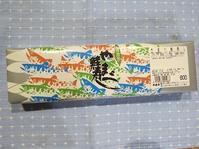 札幌駅駅弁。やまべ鮭寿司。 - あいやばばライフ